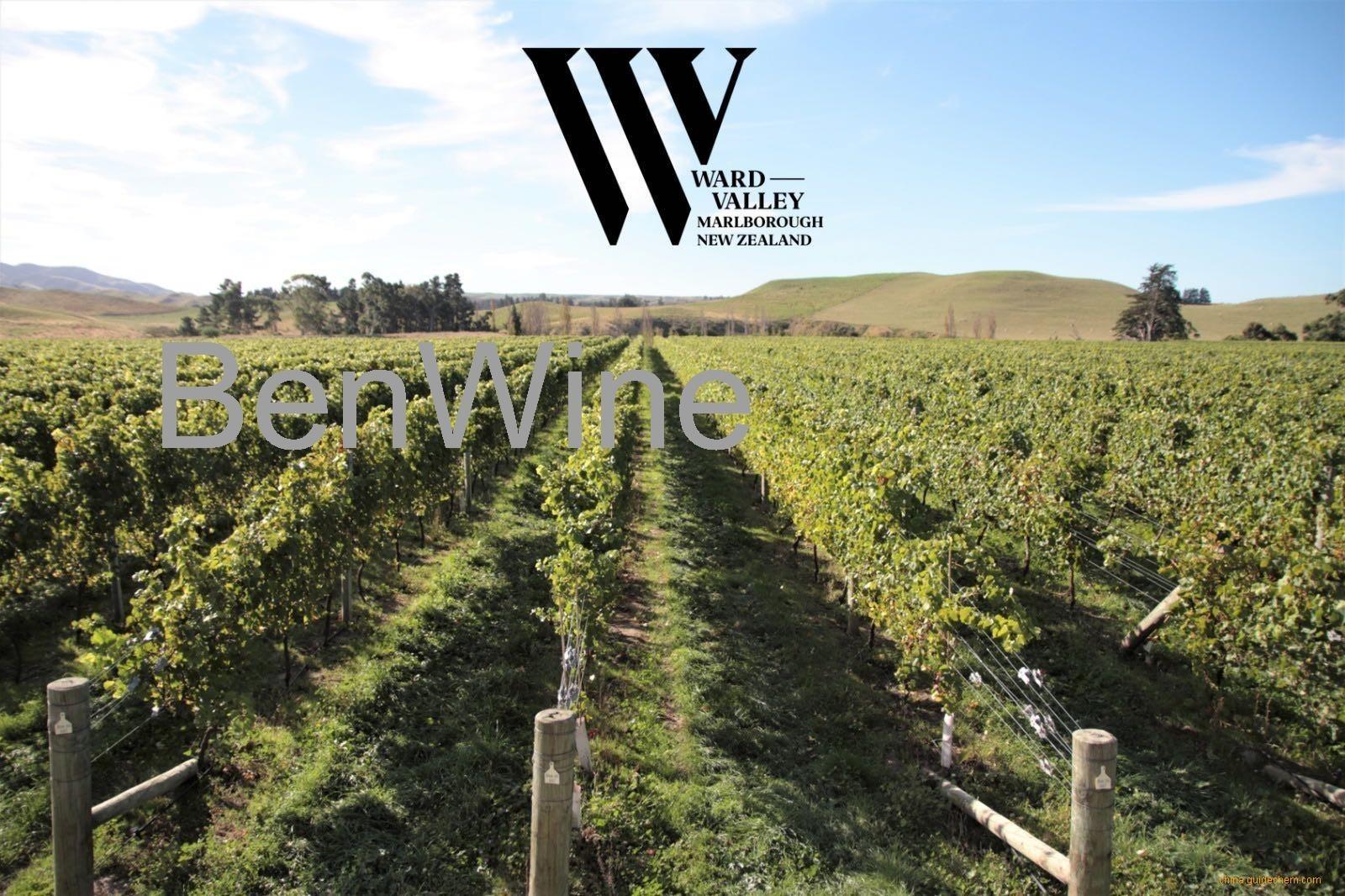 沃德山(Warld Valley)