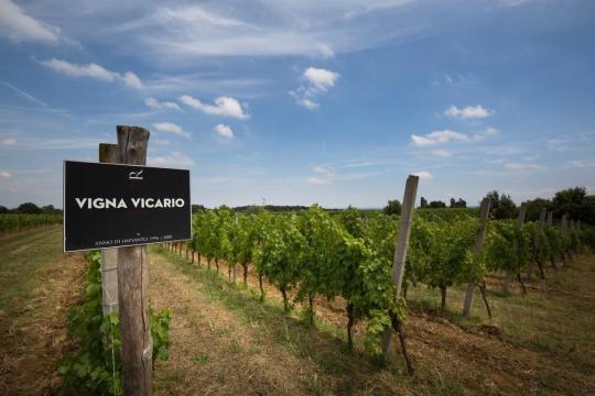 洛可庄园 葡萄酒大师推荐自然酒庄